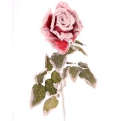 Flower Weihnachts-Rose...