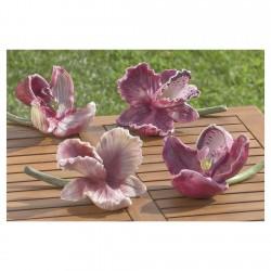 Boltze Blume Orchida 4sort....