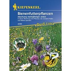 Bruno Bienenfutterpflanzen...