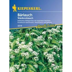 Bruno Baerlauch Allium...