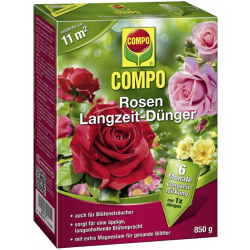 COMPO Compo Rosen...