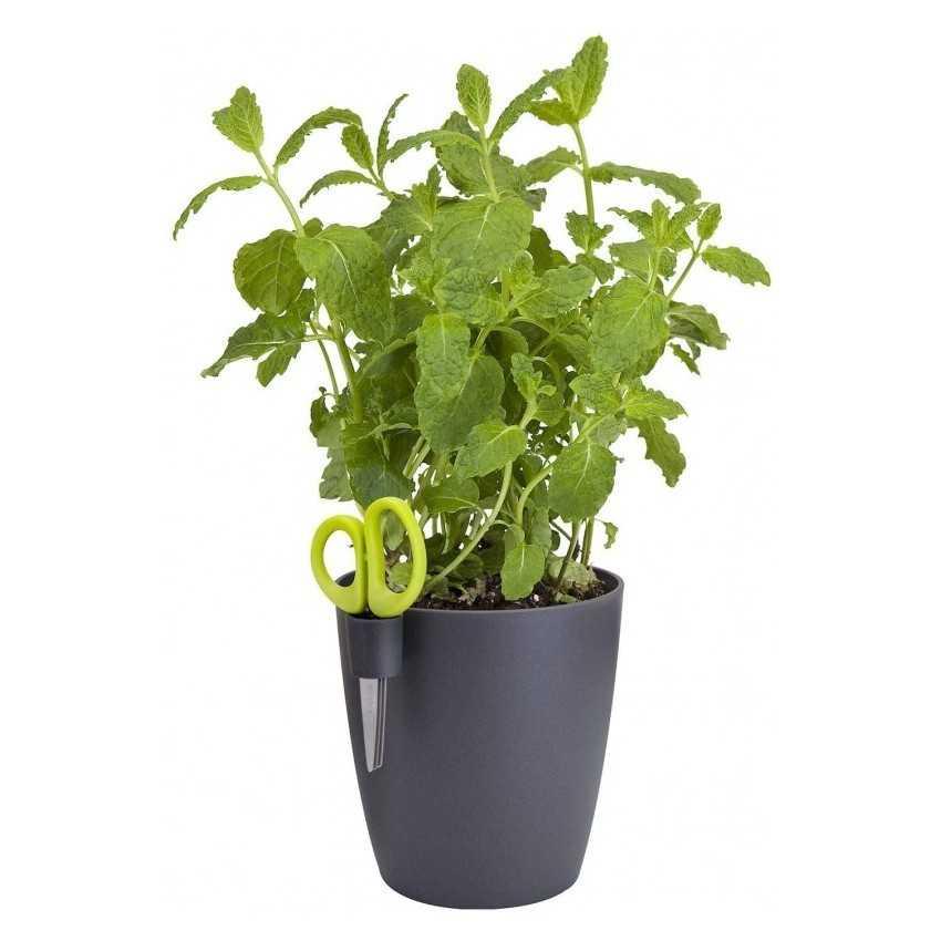 Pflanzengefäße-Kunststoff